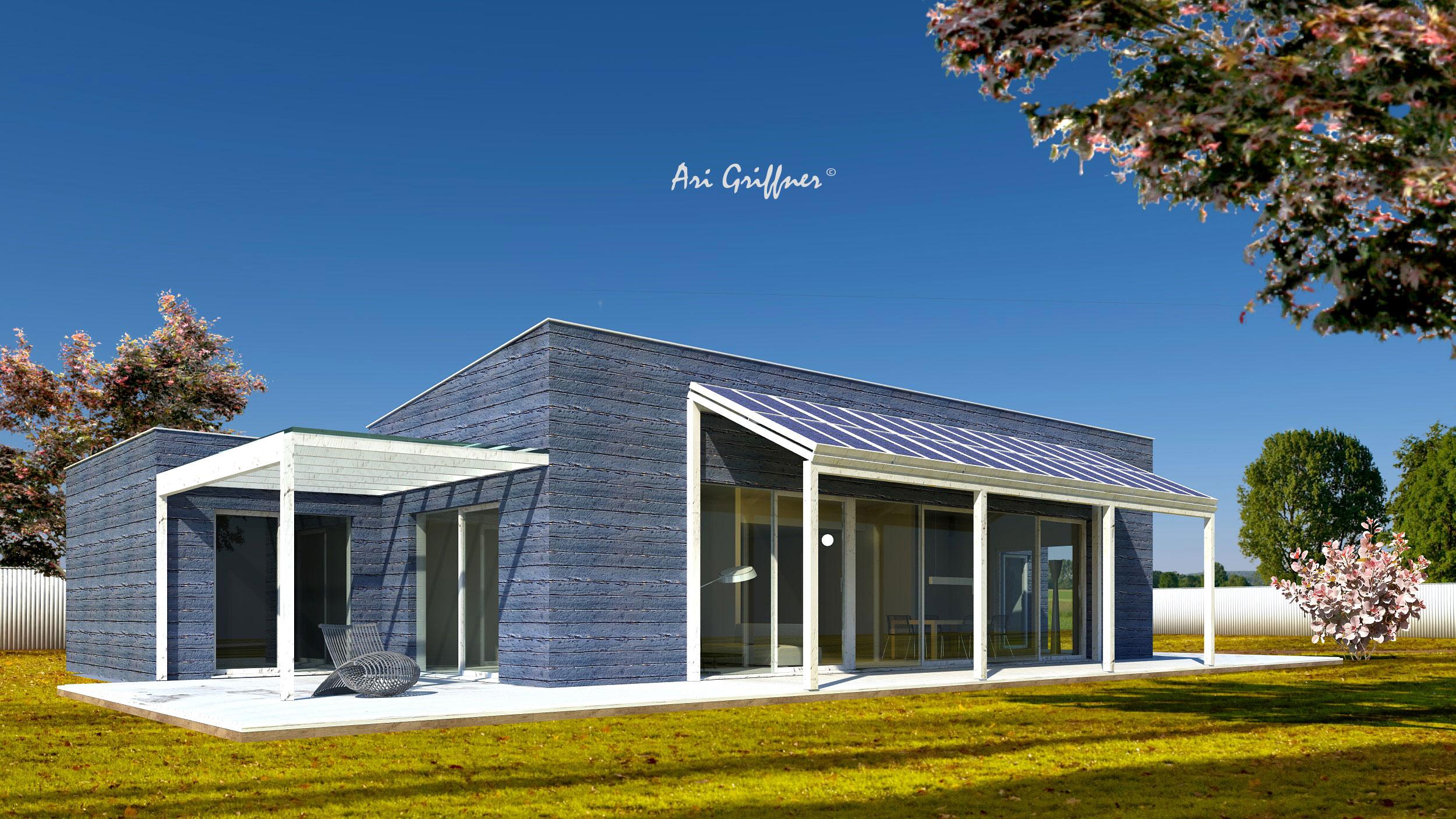 Rendering Terrassenhaus in modernem Design mit Pultdach und zentraler Fensteranordnung