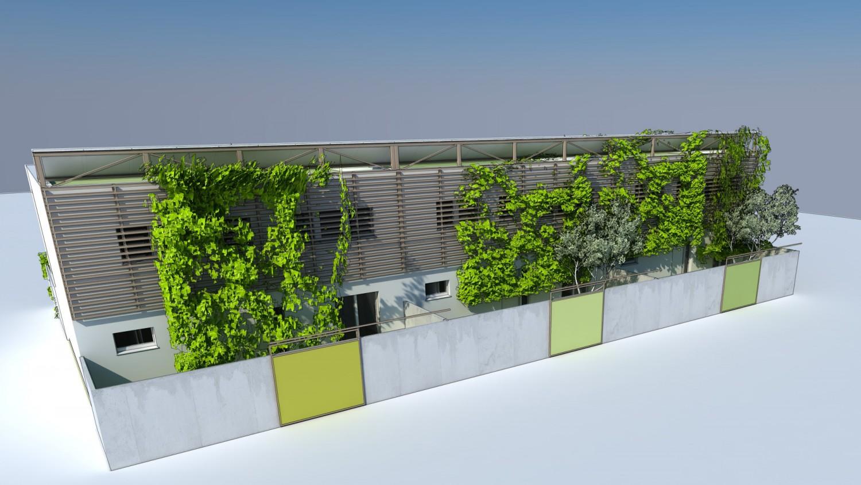 Reihenhaus mit Spalier über die gesamte Fassade, Vorgärten und Zaun